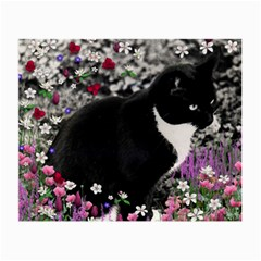 Freckles In Flowers Ii, Black White Tux Cat Small Glasses Cloth by DianeClancy