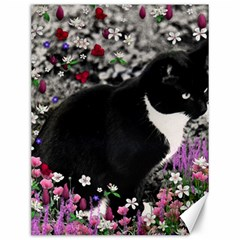 Freckles In Flowers Ii, Black White Tux Cat Canvas 12  X 16   by DianeClancy