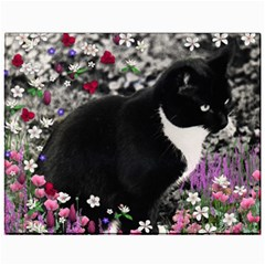 Freckles In Flowers Ii, Black White Tux Cat Canvas 11  X 14   by DianeClancy