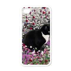 Freckles In Flowers Ii, Black White Tux Cat Apple Iphone 4 Case (white) by DianeClancy