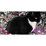Freckles In Flowers Ii, Black White Tux Cat Happy Birthday 3D Greeting Card (8x4)  Front