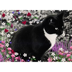 Freckles In Flowers Ii, Black White Tux Cat Birthday Cake 3d Greeting Card (7x5)  by DianeClancy