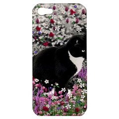 Freckles In Flowers Ii, Black White Tux Cat Apple Iphone 5 Hardshell Case by DianeClancy