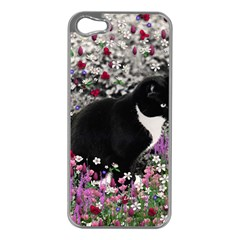 Freckles In Flowers Ii, Black White Tux Cat Apple Iphone 5 Case (silver) by DianeClancy