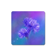 Flowers Cornflower Floral Chic Stylish Purple  Square Magnet by yoursparklingshop