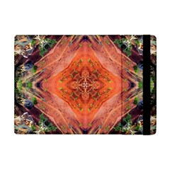 Boho Bohemian Hippie Floral Abstract Faded  Apple Ipad Mini Flip Case by CrypticFragmentsDesign