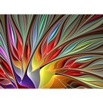 Fractal Bird of Paradise Circle Bottom 3D Greeting Card (7x5) Front