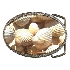 Tropical Exotic Sea Shells Belt Buckles by yoursparklingshop