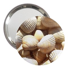 Tropical Exotic Sea Shells 3  Handbag Mirrors by yoursparklingshop