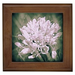 White Flower Framed Tiles