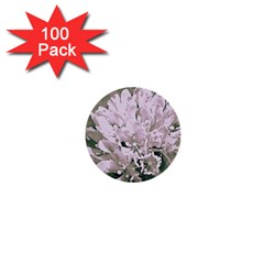 White Flower 1  Mini Buttons (100 Pack)