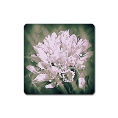 White Flower Square Magnet by uniquedesignsbycassie