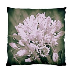 White Flower Standard Cushion Case (two Sides) by uniquedesignsbycassie
