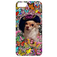 Chi Chi In Butterflies, Chihuahua Dog In Cute Hat Apple Iphone 5 Classic Hardshell Case by DianeClancy