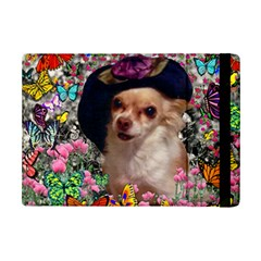 Chi Chi In Butterflies, Chihuahua Dog In Cute Hat Ipad Mini 2 Flip Cases by DianeClancy