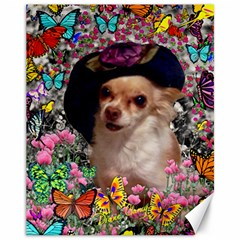 Chi Chi In Butterflies, Chihuahua Dog In Cute Hat Canvas 11  X 14   by DianeClancy