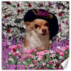 Chi Chi In Flowers, Chihuahua Puppy In Cute Hat Canvas 12  X 12   by DianeClancy