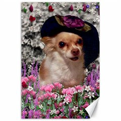 Chi Chi In Flowers, Chihuahua Puppy In Cute Hat Canvas 24  X 36  by DianeClancy