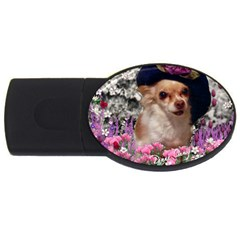 Chi Chi In Flowers, Chihuahua Puppy In Cute Hat Usb Flash Drive Oval (2 Gb)  by DianeClancy