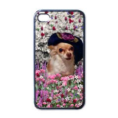 Chi Chi In Flowers, Chihuahua Puppy In Cute Hat Apple Iphone 4 Case (black) by DianeClancy