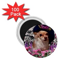 Chi Chi In Flowers, Chihuahua Puppy In Cute Hat 1 75  Magnets (100 Pack)  by DianeClancy