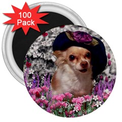 Chi Chi In Flowers, Chihuahua Puppy In Cute Hat 3  Magnets (100 Pack) by DianeClancy