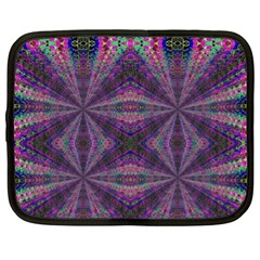 Learn Truth Netbook Case (xl)  by MRTACPANS
