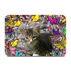 Emma In Butterflies I, Gray Tabby Kitten Plate Mats by DianeClancy