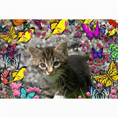 Emma In Butterflies I, Gray Tabby Kitten Collage Prints by DianeClancy