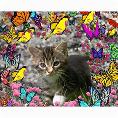 Emma In Butterflies I, Gray Tabby Kitten Canvas 8  X 10  by DianeClancy