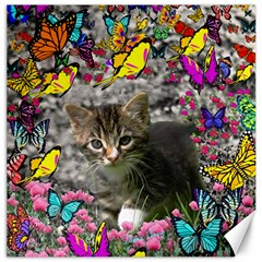 Emma In Butterflies I, Gray Tabby Kitten Canvas 20  X 20   by DianeClancy