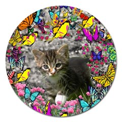 Emma In Butterflies I, Gray Tabby Kitten Magnet 5  (round) by DianeClancy
