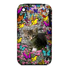 Emma In Butterflies I, Gray Tabby Kitten Apple Iphone 3g/3gs Hardshell Case (pc+silicone) by DianeClancy
