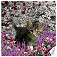 Emma In Flowers I, Little Gray Tabby Kitty Cat Canvas 12  X 12   by DianeClancy