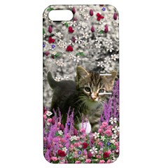 Emma In Flowers I, Little Gray Tabby Kitty Cat Apple Iphone 5 Hardshell Case With Stand by DianeClancy