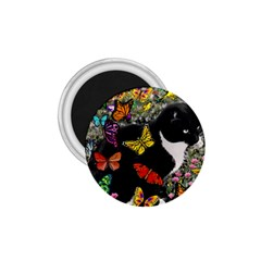 Freckles In Butterflies I, Black White Tux Cat 1 75  Magnets by DianeClancy