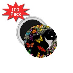 Freckles In Butterflies I, Black White Tux Cat 1 75  Magnets (100 Pack)  by DianeClancy