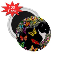 Freckles In Butterflies I, Black White Tux Cat 2 25  Magnets (100 Pack)  by DianeClancy
