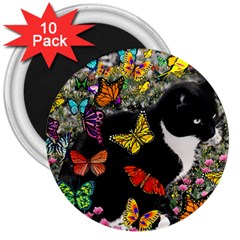 Freckles In Butterflies I, Black White Tux Cat 3  Magnets (10 Pack)  by DianeClancy