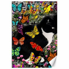 Freckles In Butterflies I, Black White Tux Cat Canvas 12  X 18