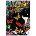 Freckles In Butterflies I, Black White Tux Cat Canvas 12  x 18   18 x12 Canvas - 1