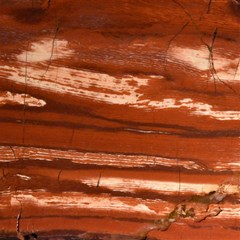 Red Earth Natural Canvas 12  X 12   by UniqueCre8ion