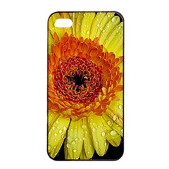 Yellow Flower Close Up Apple Iphone 4/4s Seamless Case (black) by MichaelMoriartyPhotography