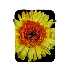 Yellow Flower Close Up Apple Ipad 2/3/4 Protective Soft Cases by MichaelMoriartyPhotography