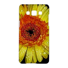 Yellow Flower Close Up Samsung Galaxy A5 Hardshell Case  by MichaelMoriartyPhotography