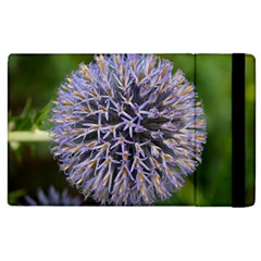 Globe Mallow Flower Apple Ipad 2 Flip Case by MichaelMoriartyPhotography