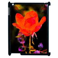 Red Beauty Apple Ipad 2 Case (black) by MichaelMoriartyPhotography