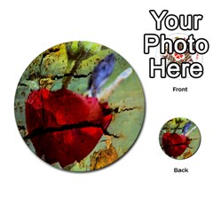 Rusty Globe Mallow Flower Multi Purpose Cards (round)  by MichaelMoriartyPhotography