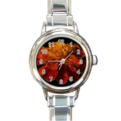 Marigold On Black Round Italian Charm Watch by MichaelMoriartyPhotography