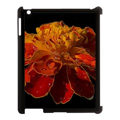 Marigold On Black Apple Ipad 3/4 Case (black) by MichaelMoriartyPhotography